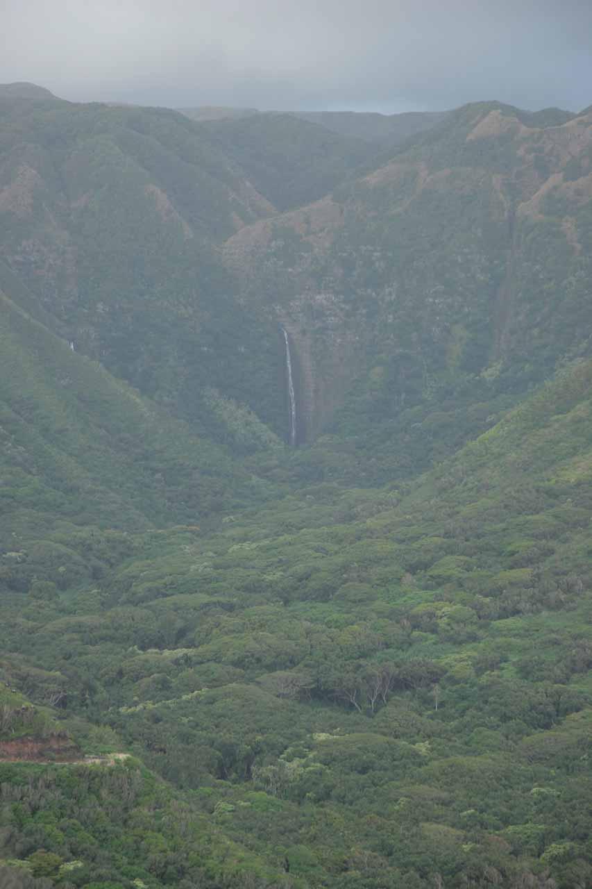 Hipuapua Falls seen from a distance