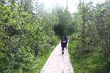 Hallingsafallet_019_07112019 - Julie and Tahia on the boardwalk, which comprised the parts that of the Hällingsåfallet Trail that would have been overgrown or muddy
