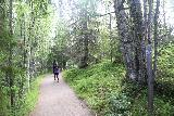 Hallingsafallet_020_07112019 - Following on the dirt track leading closer to the Hällingsåfallet overlooks