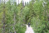 Hallingsafallet_114_07112019 - Julie on the boardwalk headed back to the car park for Hallingsafallet