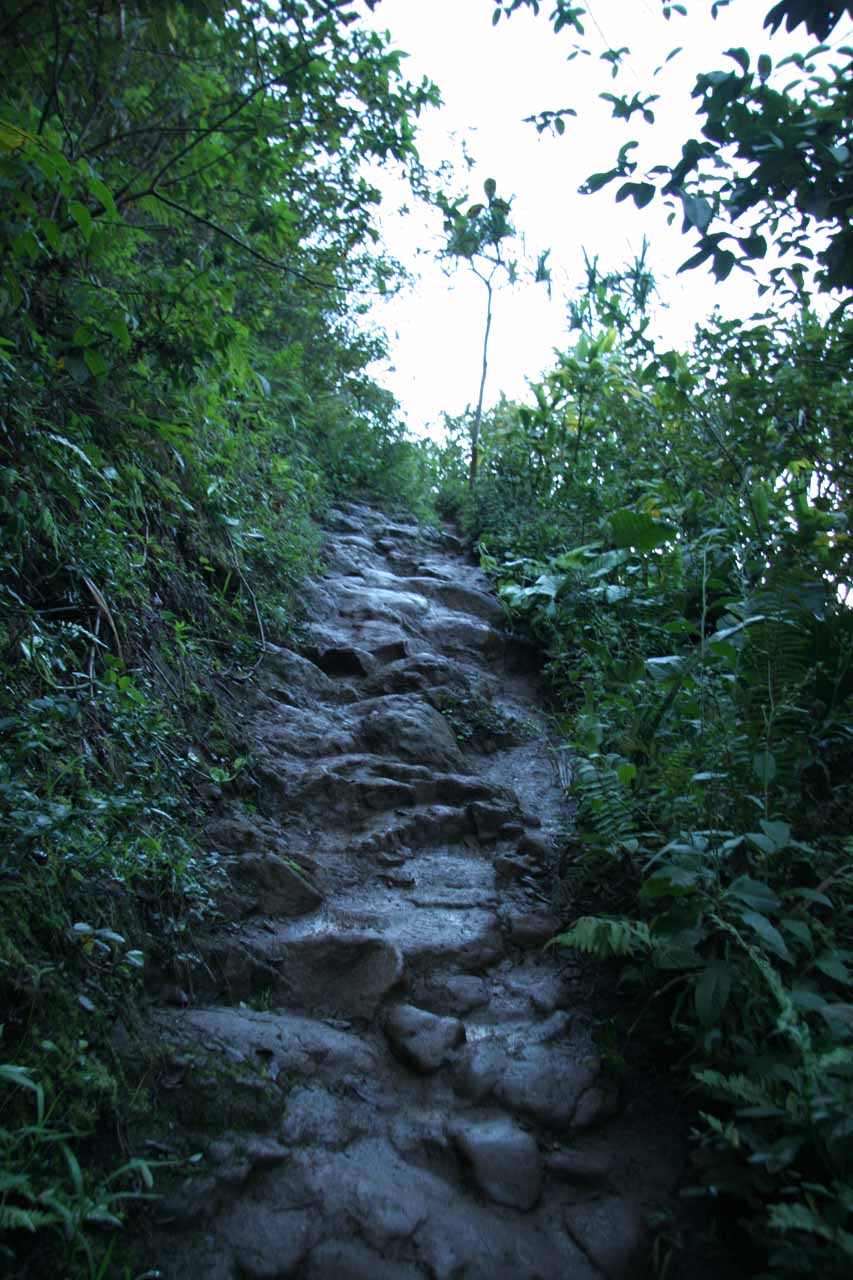 Slippery terrain on the initial ascent
