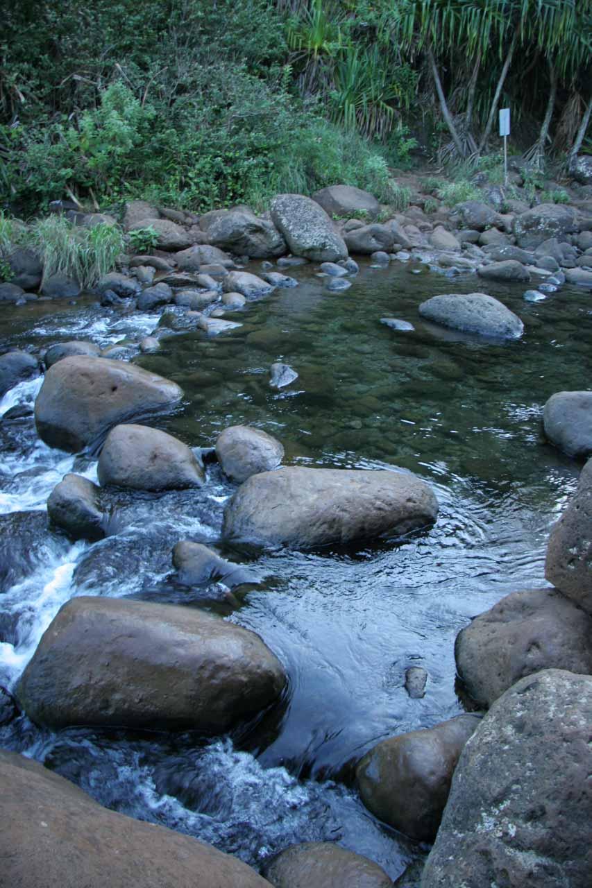 Crossing the Hanakapi'ai Stream