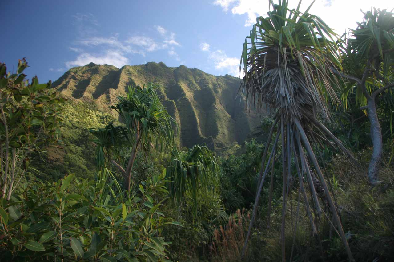 I was far enough along the Kalalau Trail that I could see fluted pali on the mauka side