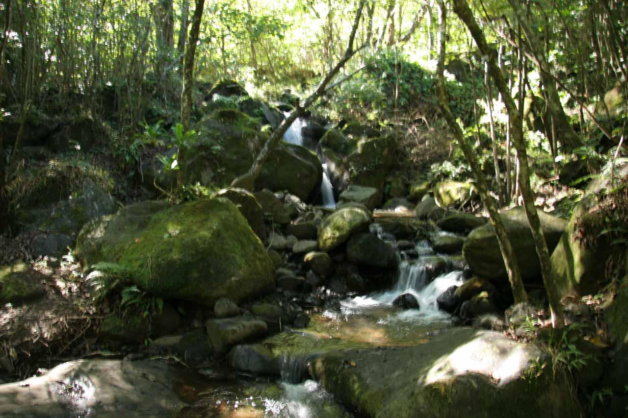 Crossing the Hanakoa Stream