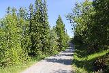Handolsforsen_063_07122019 - Taking the 250m walk all the way back to the car park after having our fill of Handölsforsen