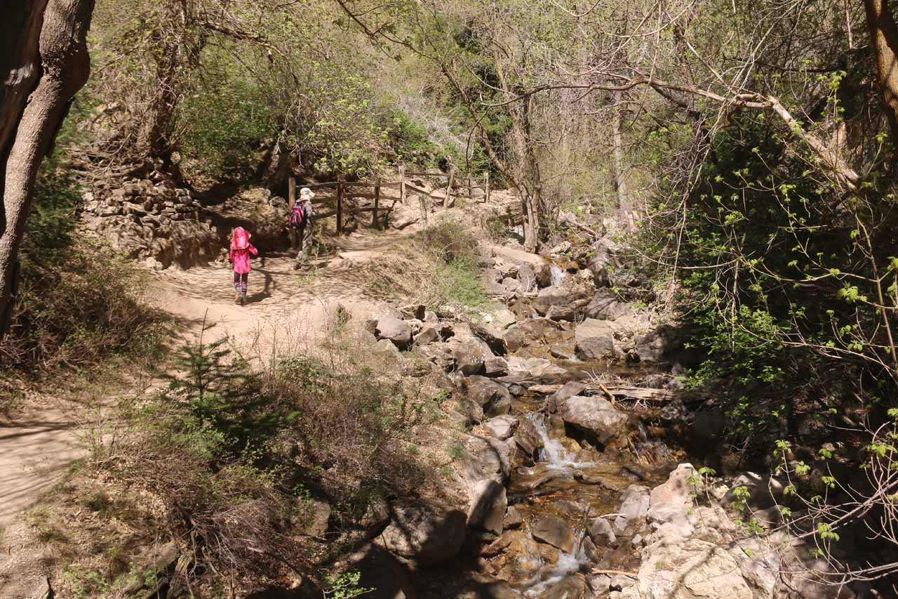 Eventually, the Hanging Lake Trail started to ascend alongside Dead Horse Creek