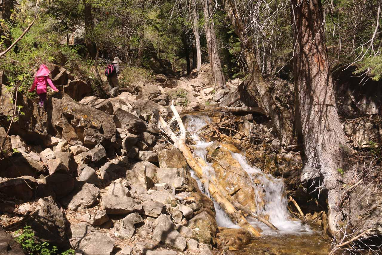 The Hanging Lake Trail ascending alongside more intermediate cascades on Dead Horse Creek