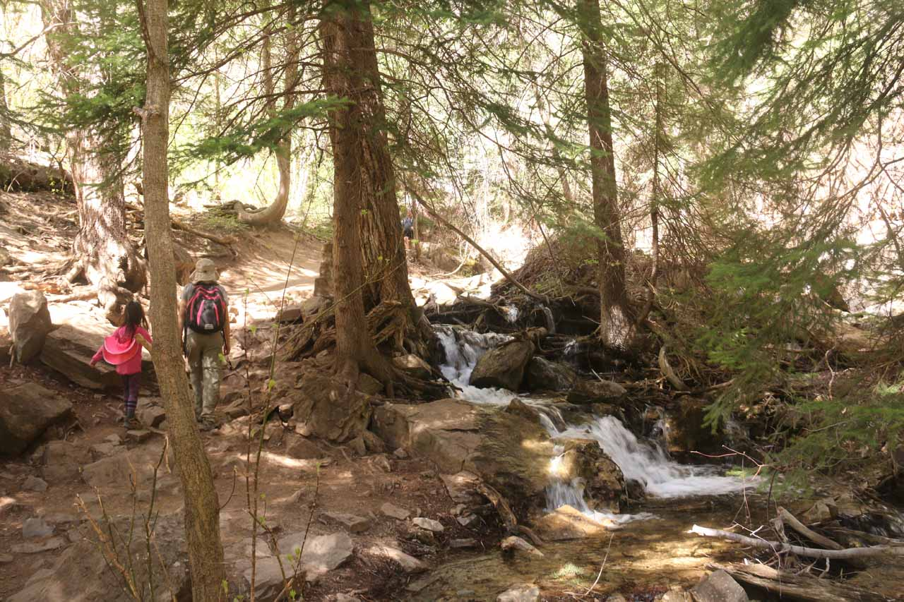 Julie and Tahia walking past another intermediate cascade on Dead Horse Creek