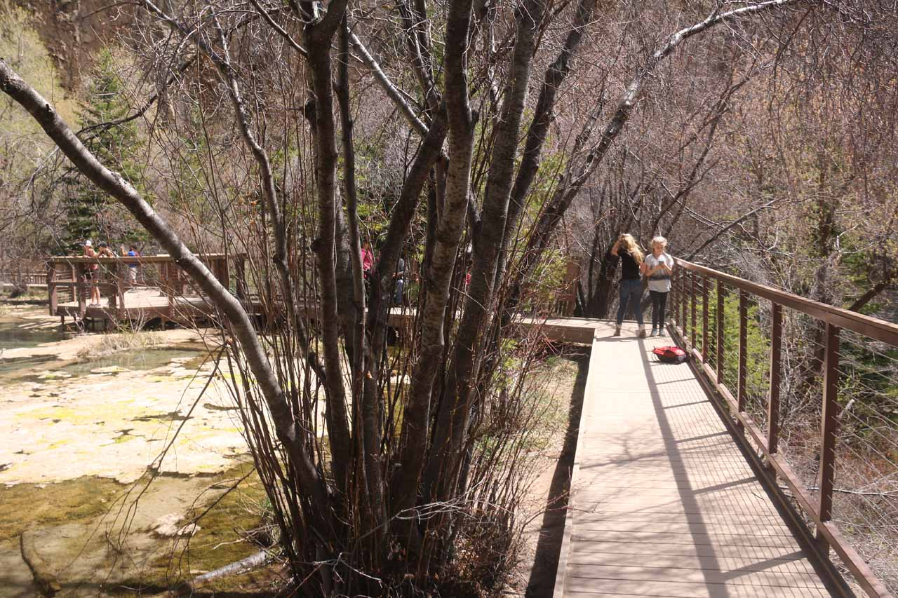 This was the boardwalk fronting Hanging Lake