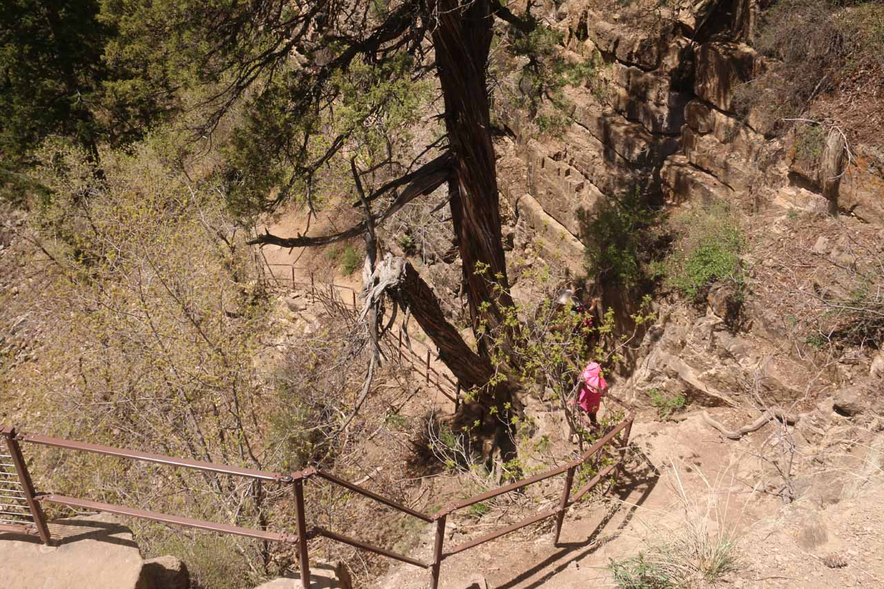 Looking down at the rest of the cliff-hugging final section of the Hanging Lake Trail