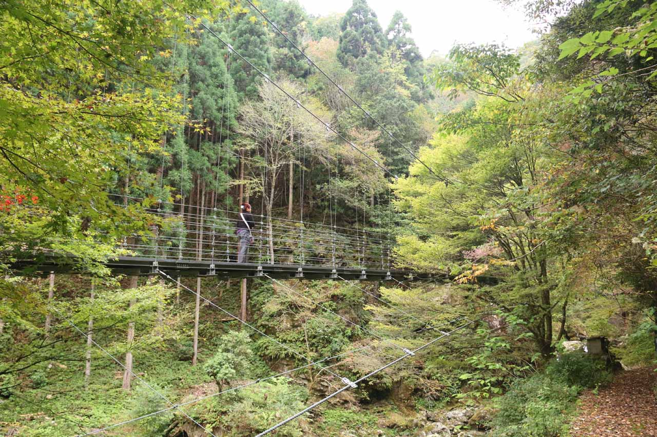 Right behind the trailhead was this suspension bridge traversing Hachijogawa