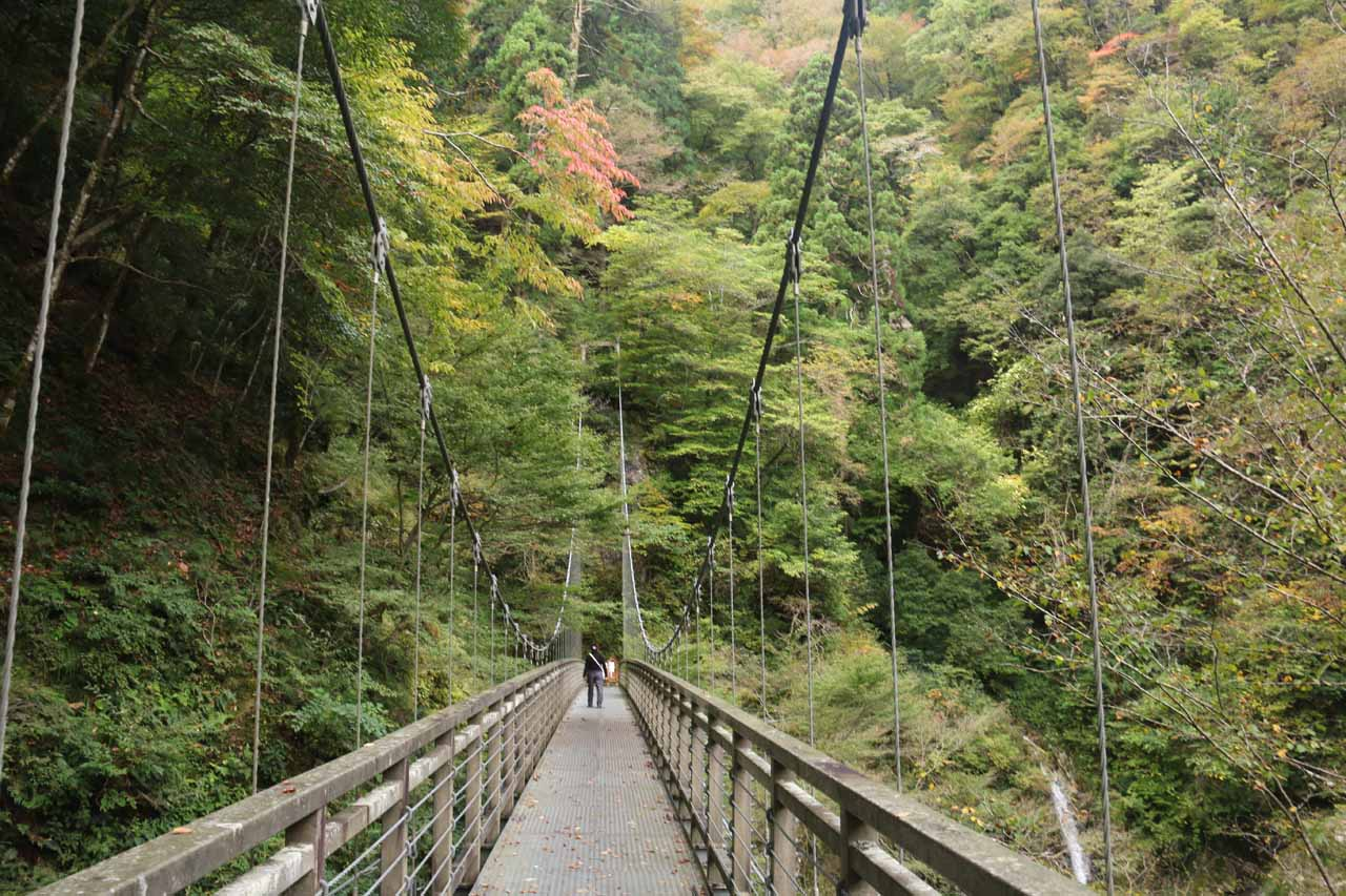 The koyo wasn't quite at peak yet, but we did see some hints of it while on the Harafudo Falls suspension bridge