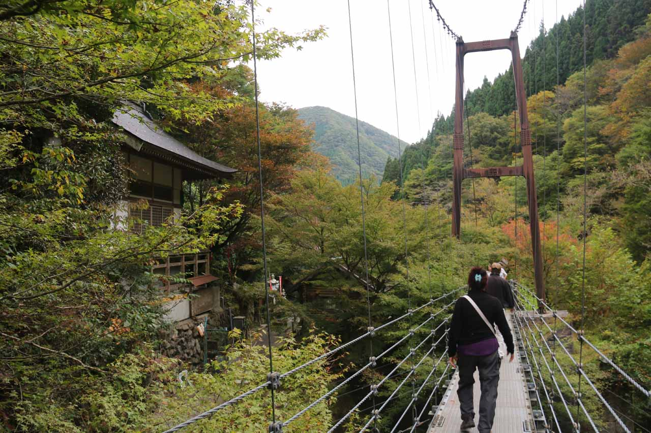 Going back across the suspension bridge over Hachijogawa
