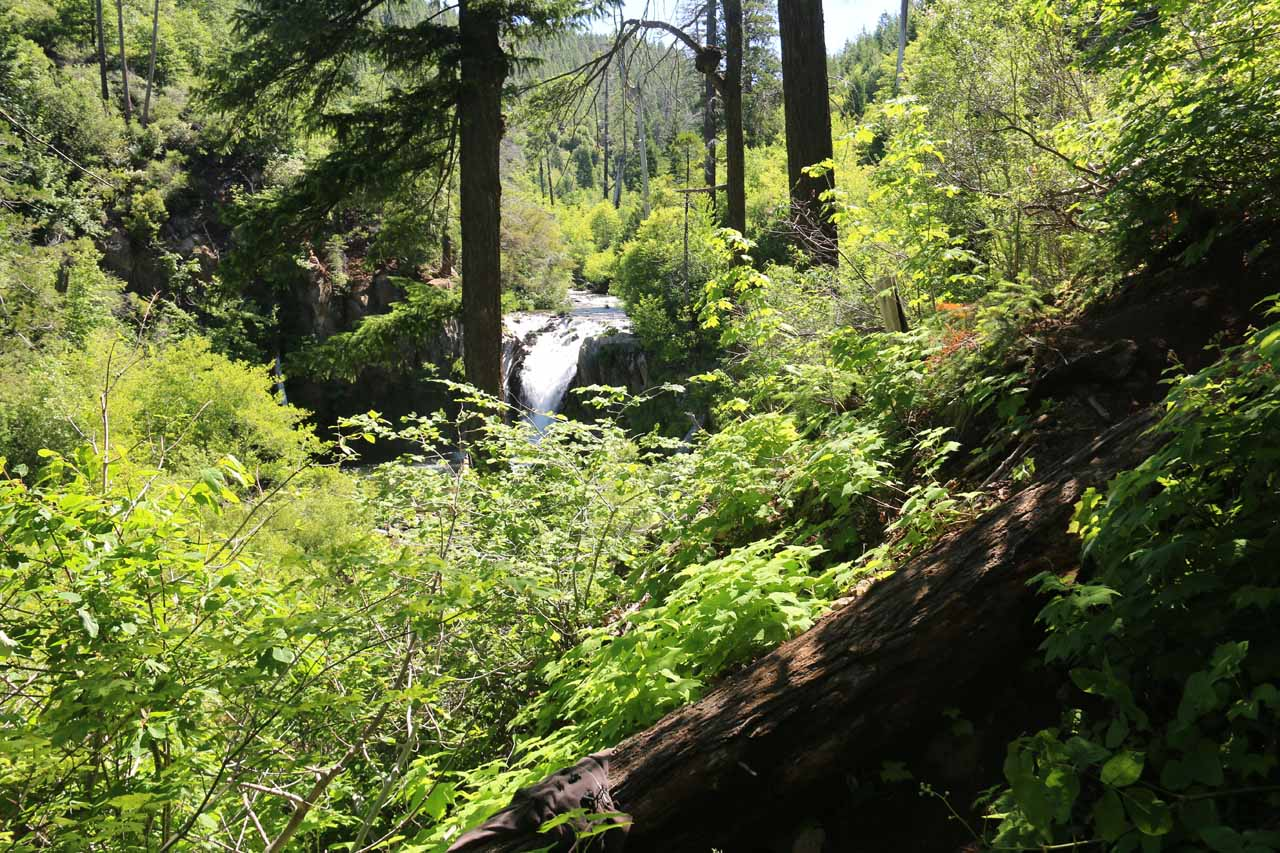 It didn't take long before we could finally start seeing Hatchet Creek Falls so we knew we had to keep going