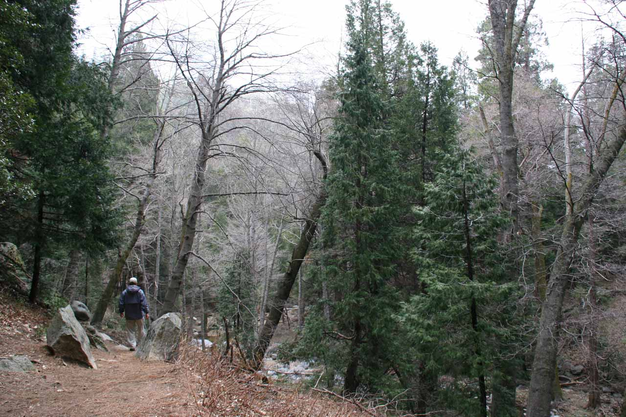 Now the trail follows Seeley Creek downstream