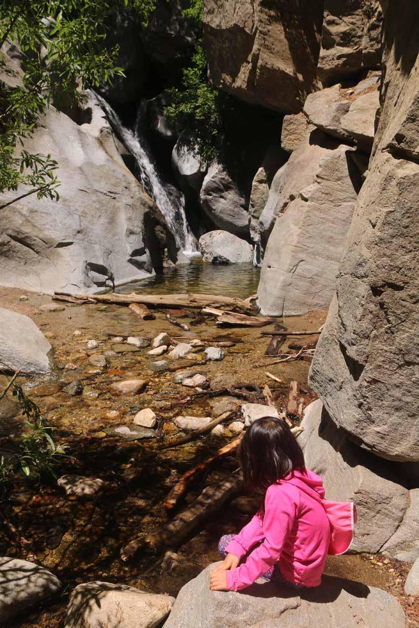 Tahia enjoying the bottom of Heart Rock Falls
