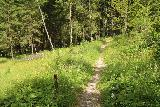 Heiligenblut_227_07122018 - Beyond the clearing, the trail narrowed as it was about to rejoin the main non-looping-part of the Goessnitz Waterfall Trail before finally returning to the Retzschitzparkplatz