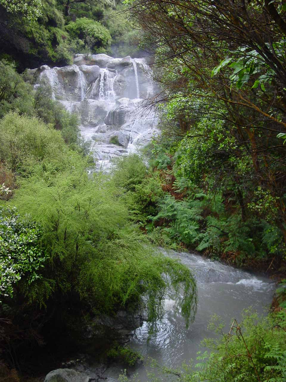 Closer look at Kakahi Falls and the stream cutting between the bush