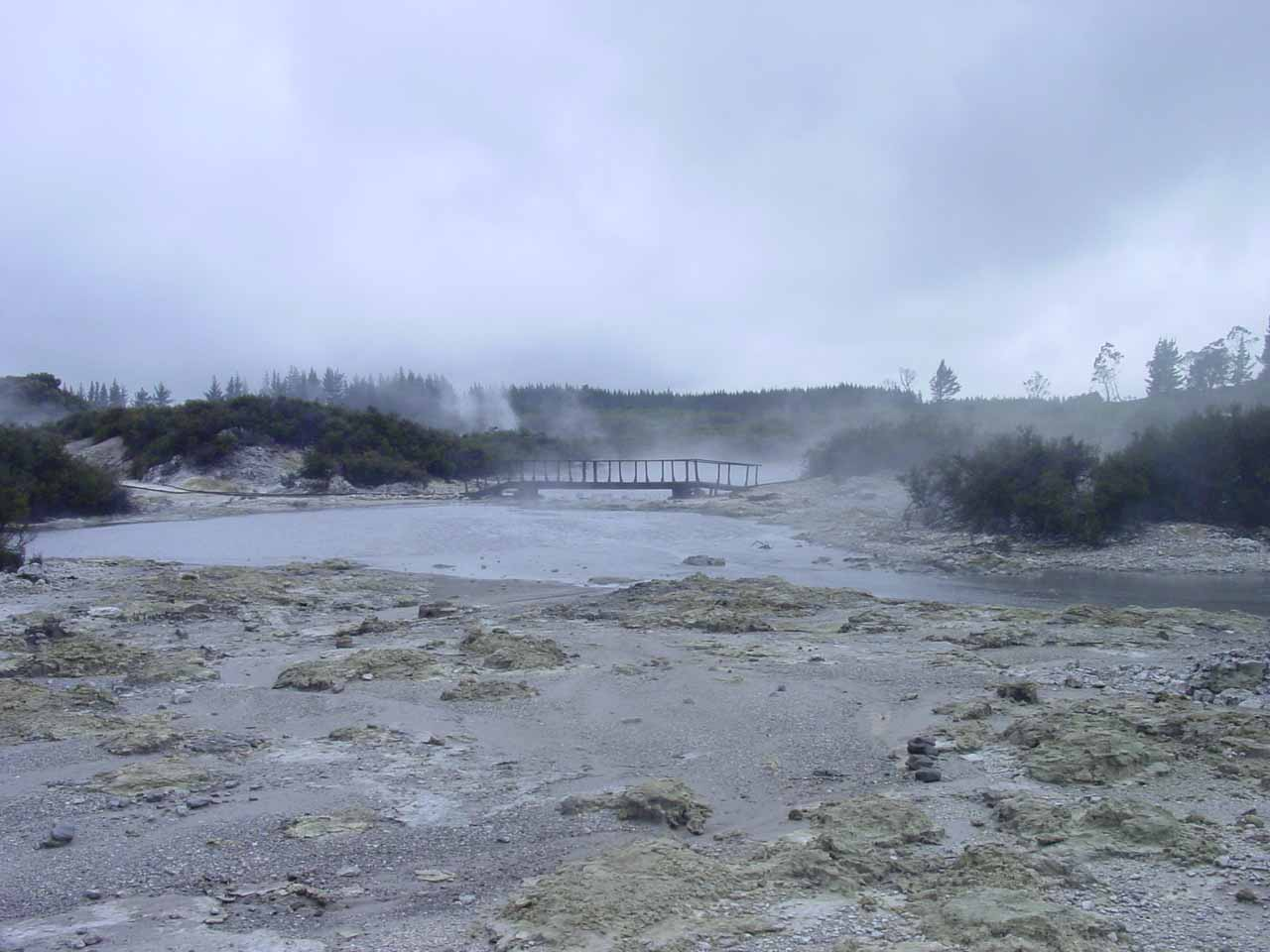 The thermal reserve we visited immediately after our Tarawera Falls excursion was Hell's Gate, which was said to be the most geothermically active reserve in the Rotorua Area