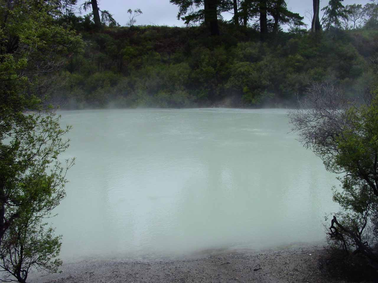 In the farthest reaches of Hell's Gate, we saw this menacing-looking highly acidic sulphur lake