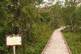 Henfallet_030_07132019 - The boardwalk leading to the lookout for Henfallet