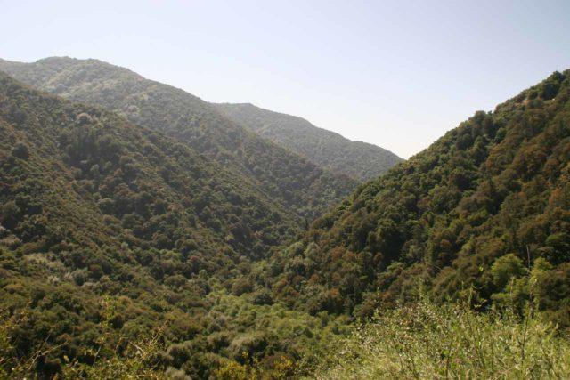 Hermit_Falls_007_04252010 - Looking down Big Santa Anita Canyon