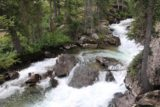 Hidden_Falls_Jenny_Lake_050_08132017 - Looking upstream at more intermediate cascades on Cascade Creek en route to the Hidden Falls lookout during our August 2017 hike