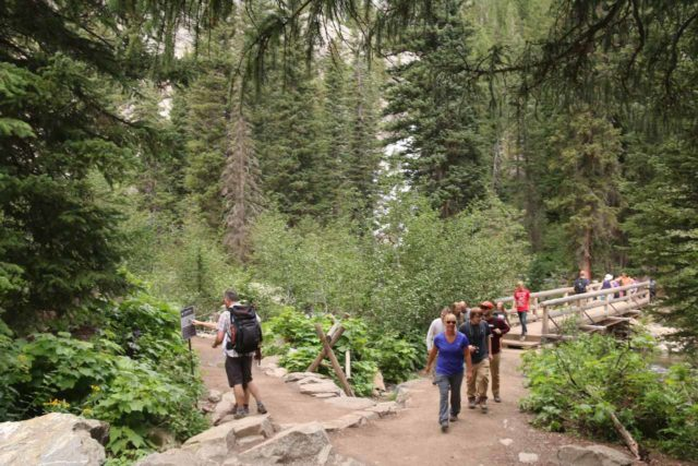 Hidden_Falls_Jenny_Lake_062_08132017 - A trail junction where going left would lead to the Hidden Falls viewpoint while going right would continue up into Cascade Canyon