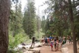Hidden_Falls_Jenny_Lake_096_08132017 - It was quite busy around the Hidden Falls lookout during our August 2017 visit