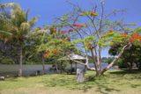 Hienghene_161_11252015 - At the picnic area for La Linderalique