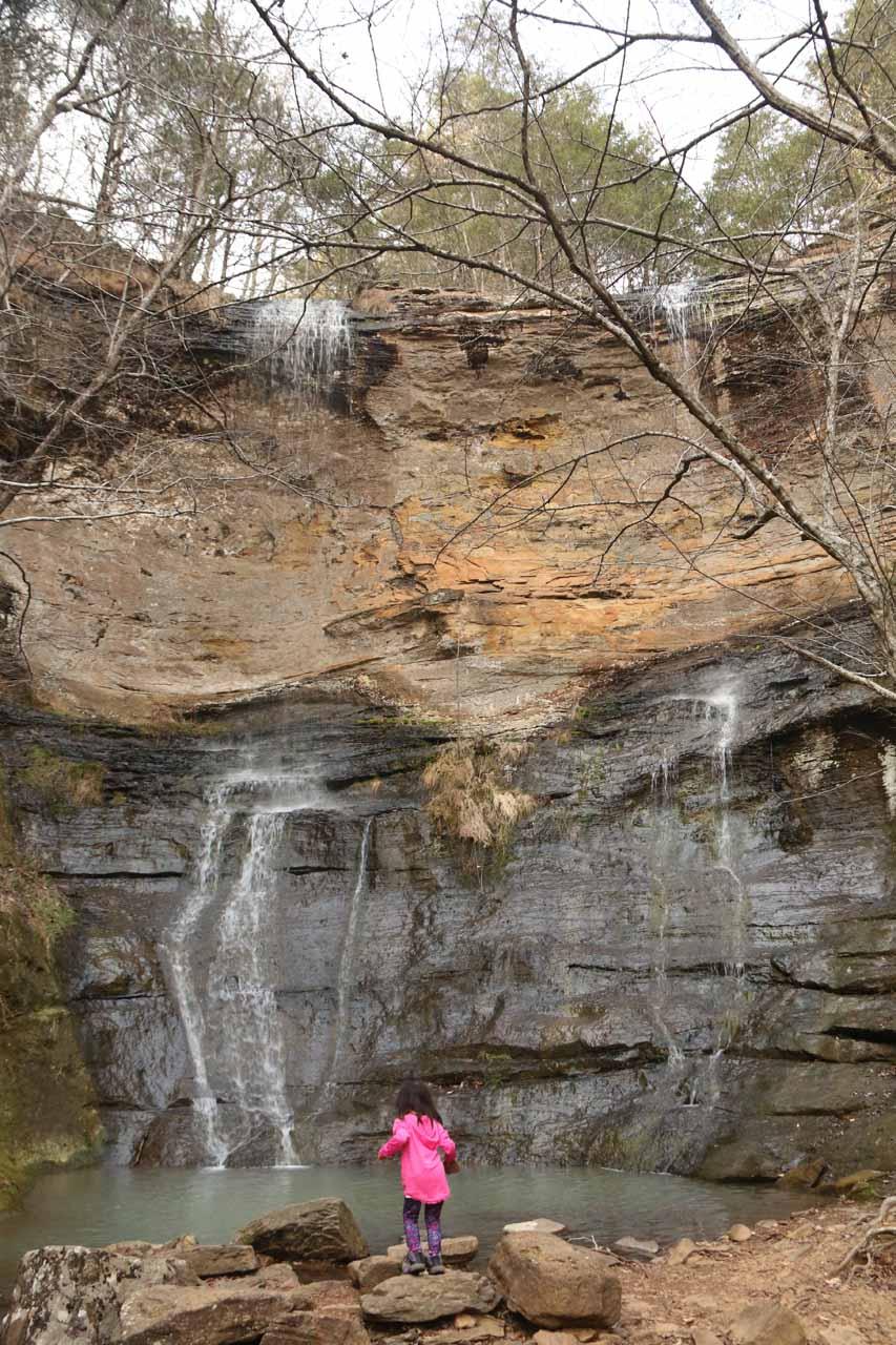 Tahia chucking rocks into the plunge pool at High Banks Twin Falls