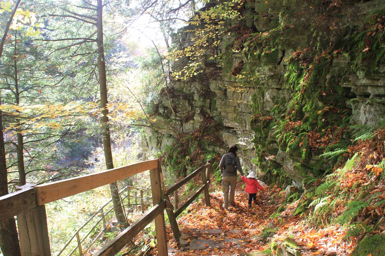 The leafy trail skirted the cliffs before going down the wooden steps leading into the steep gorge