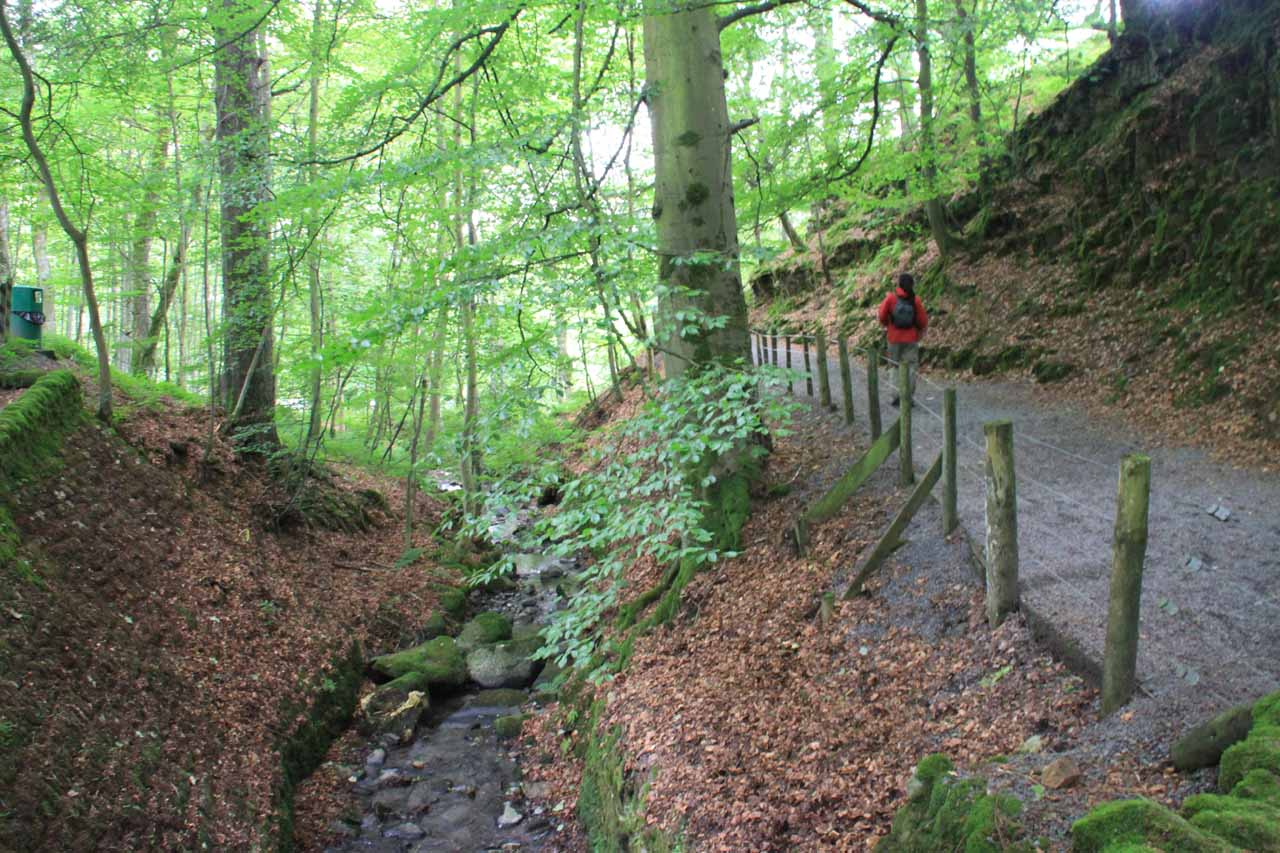 Once we got past this brook, the trail then narrowed as it got closer alongside the River Tees