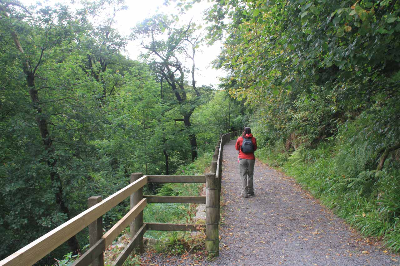 Julie on the trail as it was now directly above the River Tees