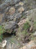 Hindmarsh_Falls_005_jx_11202006