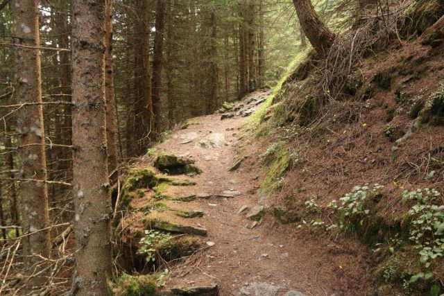 Hintertux_389_07182018 - Continuing the steep climb along the direct Schleierfall Trail