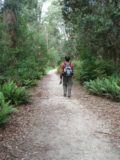 Hogarth_Falls_005_jx_11272006 - That's me on the lush forest walk towards Hogarth Falls back in late November 2006