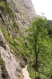 Hollentalklamm_086_06262018 - Looking back down the Hoellentalklamm Trail with its cliff-hugging context as I was nearing the mouth of the gorge itself