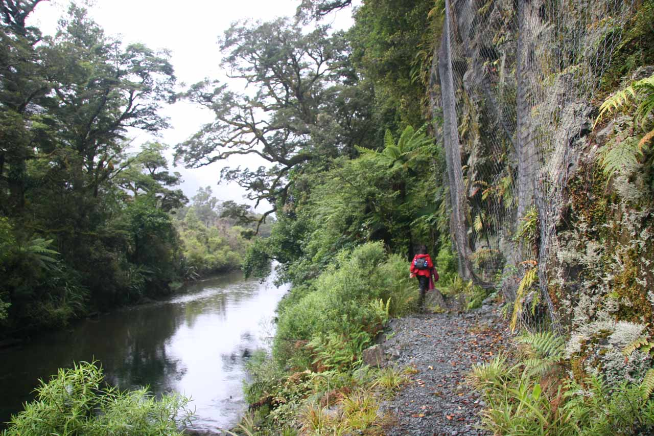 This part of the Hollyford Track was squeezed between the Hollyford River and a vertical cliff where they put nets there to ensure any falling rocks wouldn't mess up the track