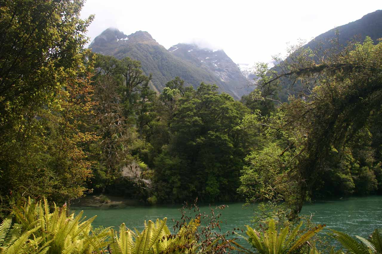 As we were returning to the trailhead of the Hollyford Track, the scenery started to improve as the weather was improving