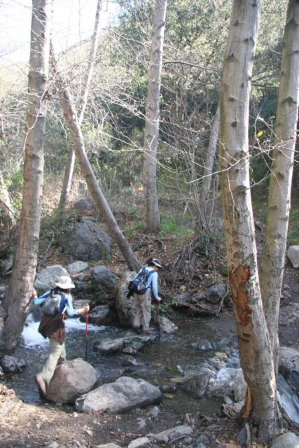 Holy_Jim_Falls_009_02142010 - One of the tricky stream crossings en route to Holy Jim Falls when the creek had high flow