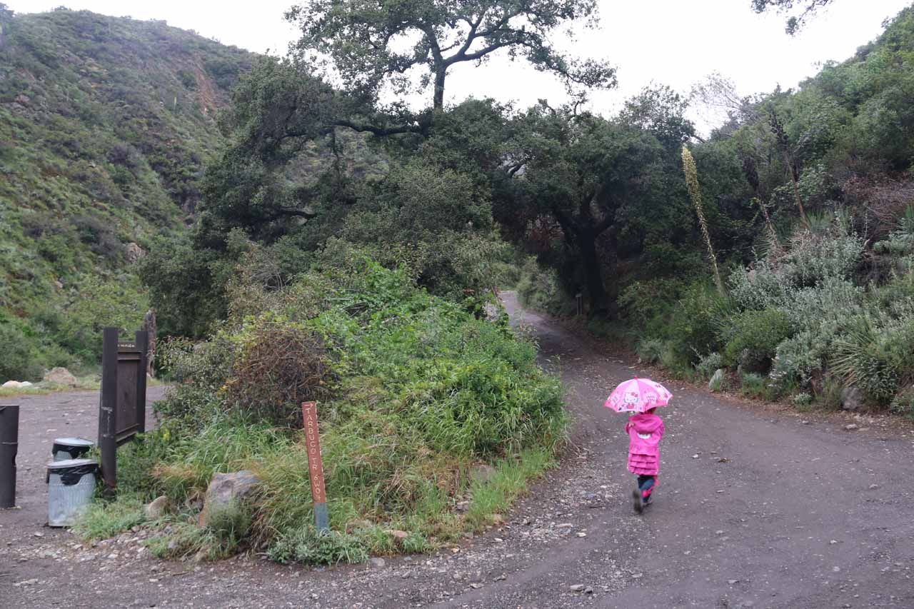 Tahia getting onto the Holy Jim Trail. We had to make sure we took this trail and not continue walking east on the Trabuco Creek Road