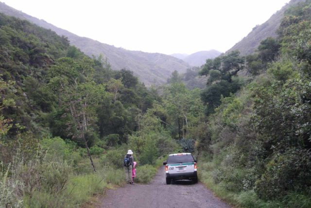 Holy_Jim_Falls_023_04102016 - A high clearance ranger vehicle driving past us as we walked towards Holy Jim Falls