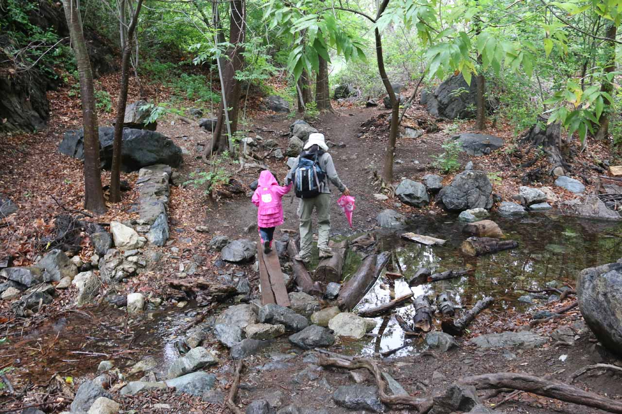 This was the first stream crossing we encountered almost immediately after the gate marking the official trail