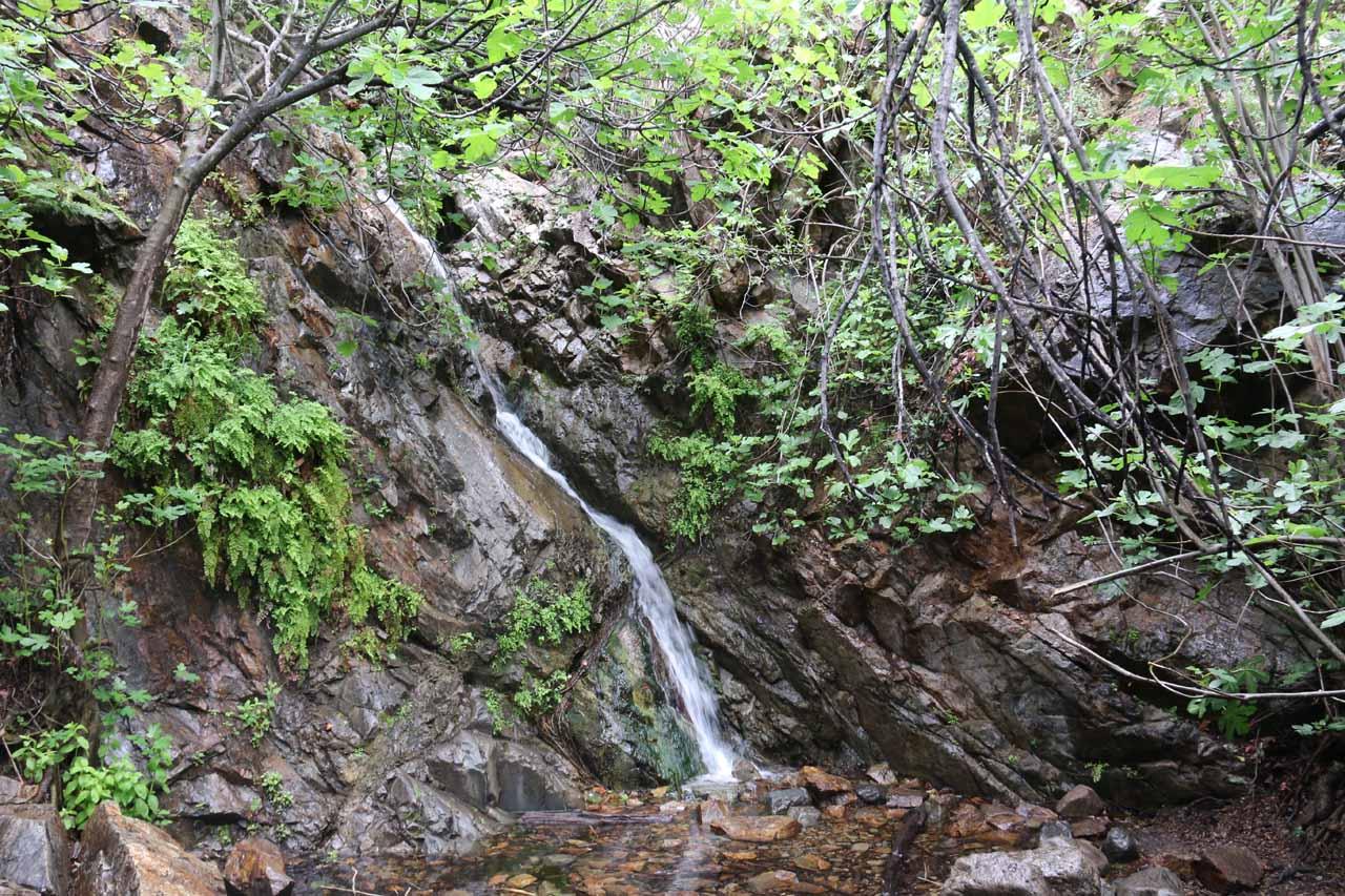 Last look at Holy Jim Falls in low flow