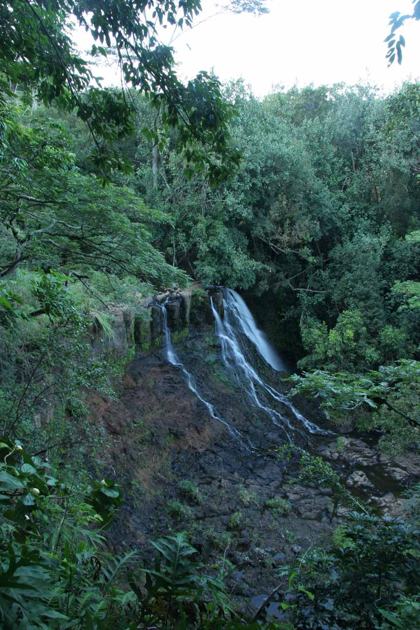 Distant look at the Lower Ho'opi'i Falls
