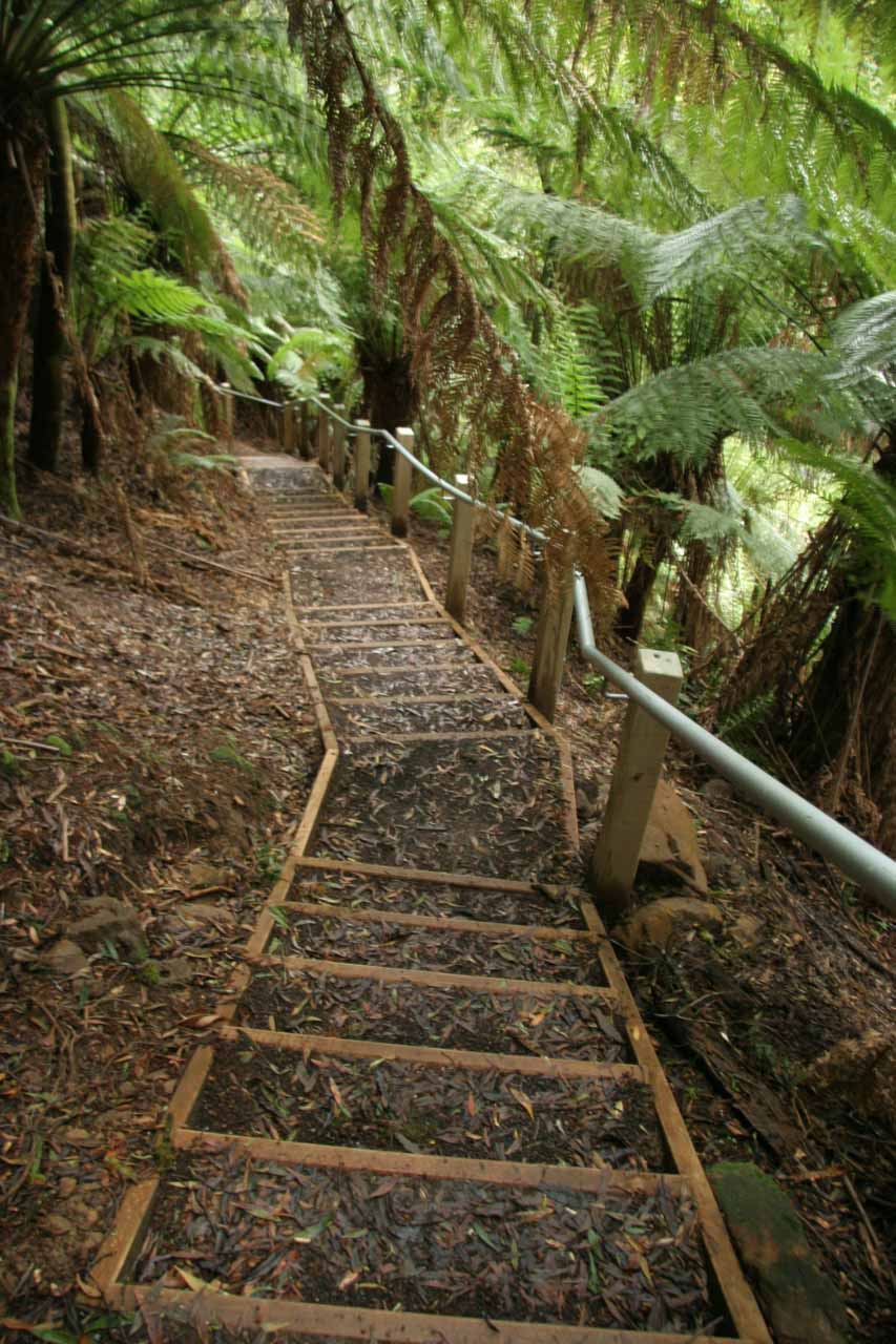 Looking back down the steps taken to get to the base of Hopetoun Falls