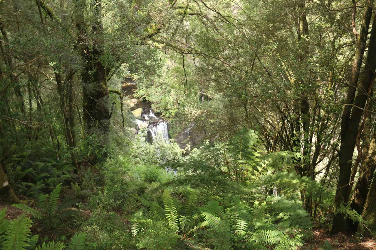This was the view of Hopetoun Falls from the upper lookout in November 2017