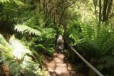 Hopetoun_Falls_17_007_11172017 - Julie descending towards the Aire River for a closer look at Hopetoun Falls during our November 2017 visit