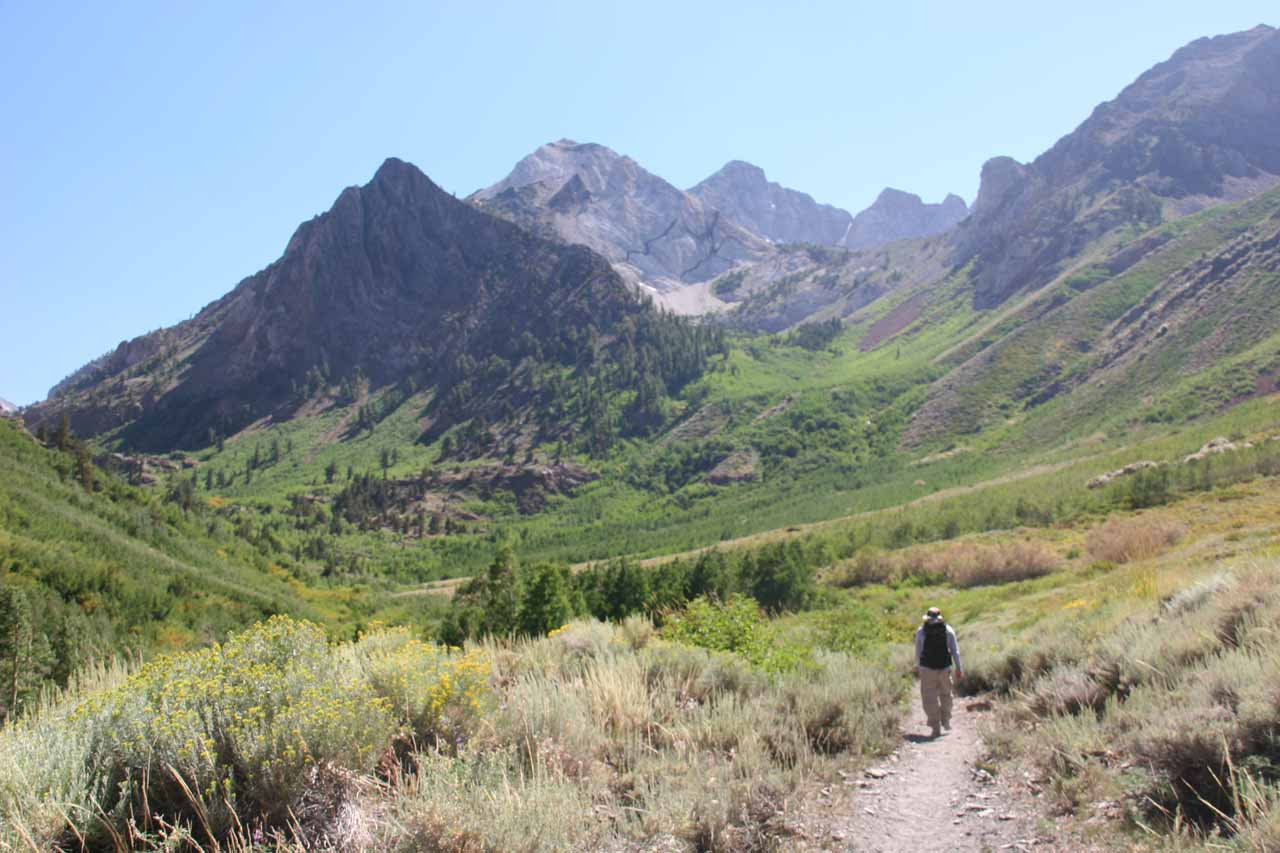 The McGee Creek Trail backed by Red Mountain and White Mountain